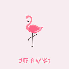 Cute Flamingo vector illustration with Pink Flamingo. lettering isolated illustration on light pink background