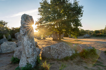 French landscape - Bretagne. A field with several menhirs at sunrise.
