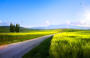 beautiful sunset in spring Tuscany farmland; Italy landscape
