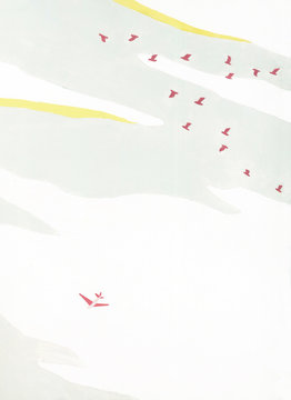 Airplane and birds in sky