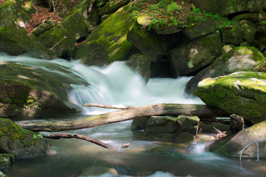 small stream among the rocks. beautiful nature scenery in spring. moss on boulders. trunk above the flow on the stone