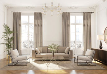 Elegant style Parisian interior, living room