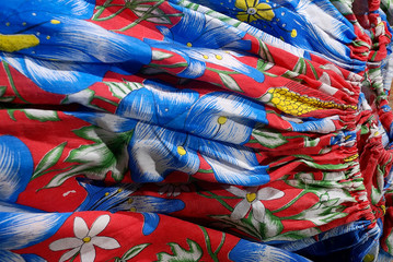 Zelfklevend Fotobehang Paradijsvogel Presidente Kennedy Quilombola Community