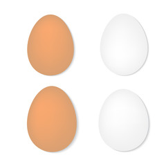 set of eggs on a white background- vector illustration