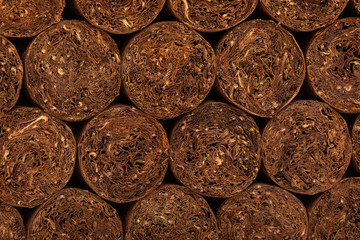 Cuban cigar texture. close-up detail of cigars. background on the topic of cigars