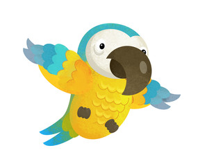 cartoon scene with happy parrot on white background - illustration for children