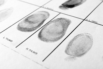 Police form with fingerprints, closeup. Forensic examination