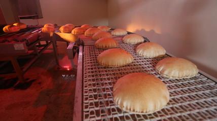 baking bread factory