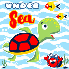 Funny marine animals cartoon