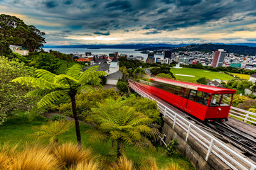 New Zealand, North Island. Wellington, the capital city. Wellington Cable Car and view from Kelburn Hill Wall mural