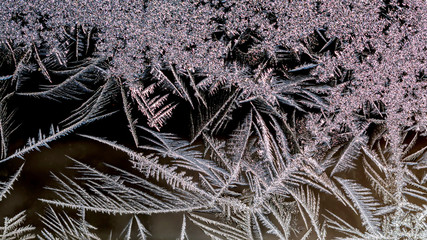 Macro images of frost pattern on window during polar vortex