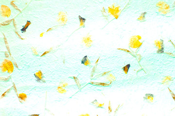 Natural patterns, flowers, leaves, grasses, on the Mulberry paper abstract background.