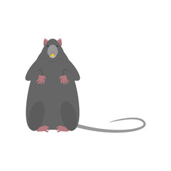Gray mouse isolated. Little Rat vector illustration.