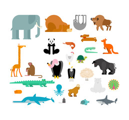 Animals set. Beast collection. cute cartoon animal. jungle and forest Wild nature. Fauna of Different Continents