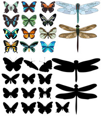isolated, dragonflies and butterflies, sketch, silhouette in set, collection