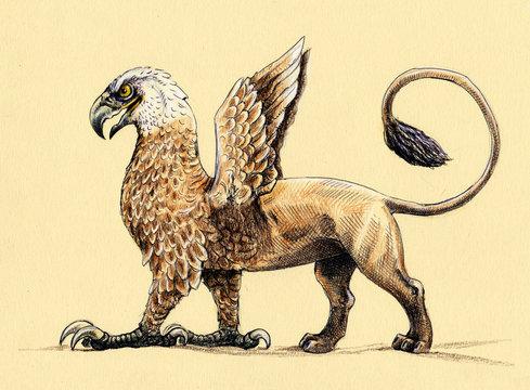 Mystical creature Griffin. Acrylic illustration. Mythological monster.