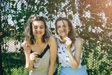 Two hipster girls are standing near the ivy leaves fence outdoors. Funny happy emotions of sisters. Best friends photo session.Stylish and fashionable women. Travel lifestyle concept.