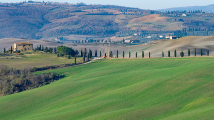 The beautiful countryside between Pienza and San Quirico d'Orcia, Siena, Tuscany, Italy