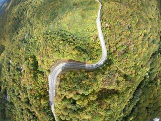 Aerial view of Sabaduri Mountain. Autumn forest. Georgia