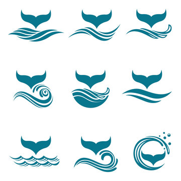 collection with abstract symbols of whale tail and sea wave