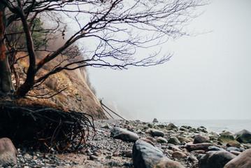 Ausflug nach Sassnitz auf der Insel Rügen - Nationalpark Jasmund