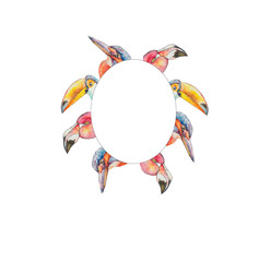 White frame of multicolored portraits of exotic birds toucan flamingos and kingfisher