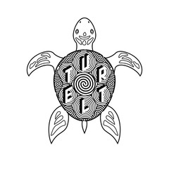 Black and white vector turtle coloring book