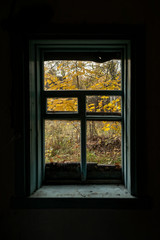 view from the window on the autumn courtyard from the dark house