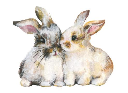 Rabbit on white background.Nice pair.Mixed media.