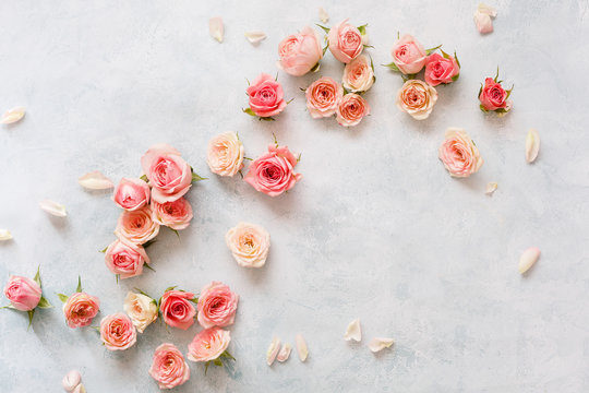 Roses On Textured Background. Various pink roses buds and petals  scattered on rustic background, overhead view, copy space
