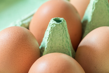 Chicken brown eggs in light green egg-carton in light green background