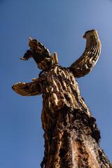 Soaring ghostlike dying saguaro against blue sky