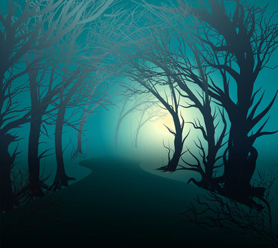 scary forest with light, park lane at night with mystery yellow light, halloween mystery,