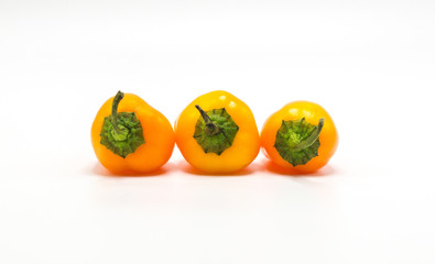 3 bright orange mini sweet peppers in a row with stems up isolated on white