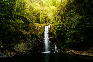 Belizean Jungle Waterfall