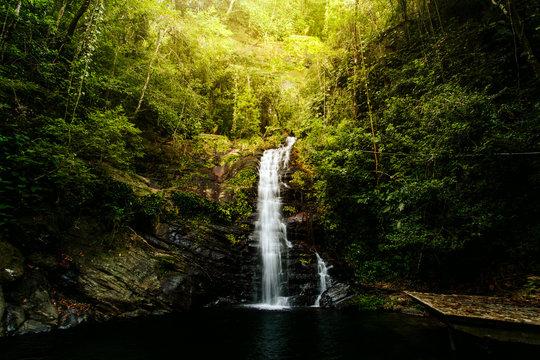 Belizean Jungle Waterfall