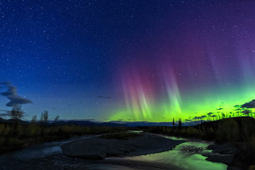 Fototapete - Northern Lights Over the North Fork of the Flathead River