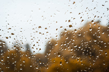 Drops of rain on window against gloomy rainy sky and golden trees on the background