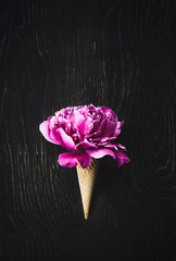 Peony fucshia in a wafer ice cream cone