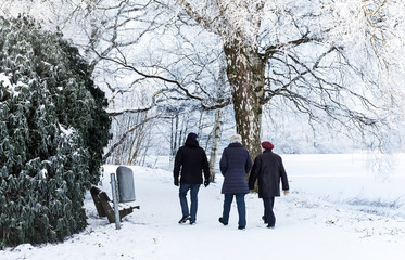 Winterspaziergung im verschneiten Stadtpark