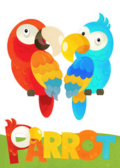 cartoon scene with happy parrot on white background with name sign of animal - illustration for children