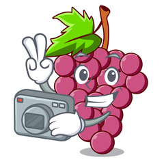 Photographer red grapes fruit above mascot table