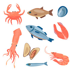 set of images on the marine theme.