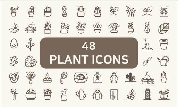 Set of 48 plant and cactus Related Vector Icons.  Contains such Icons as succulent, blooming plant, monstera, leaf, foliage, bough, tree, houseplant, terracotta pot And Other Elements.