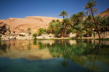 Amazing Lake and oasis with palm trees (Wadi Bani Khalid) in the Omani desert
