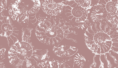 Abstract background of fossil Ammonites, Ammonoidea. Decorative wallpaper of petrified shells. Print from white textured spirals of seashells on gray-brown backdrop. Stamps of Cephalopoda mollusks.
