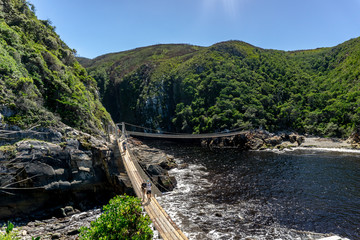 Suspension Bridge in Tsitsikamma national park in South Africa