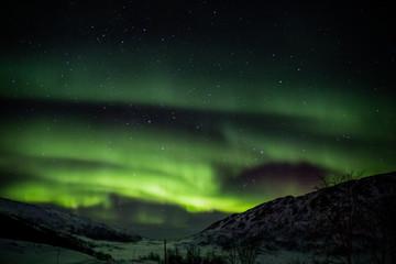 Polarlicht / Aurora borealis