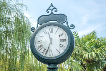 clock with roman numerals scoreboard in city park, palm trees background