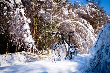 Mountain biking in snow